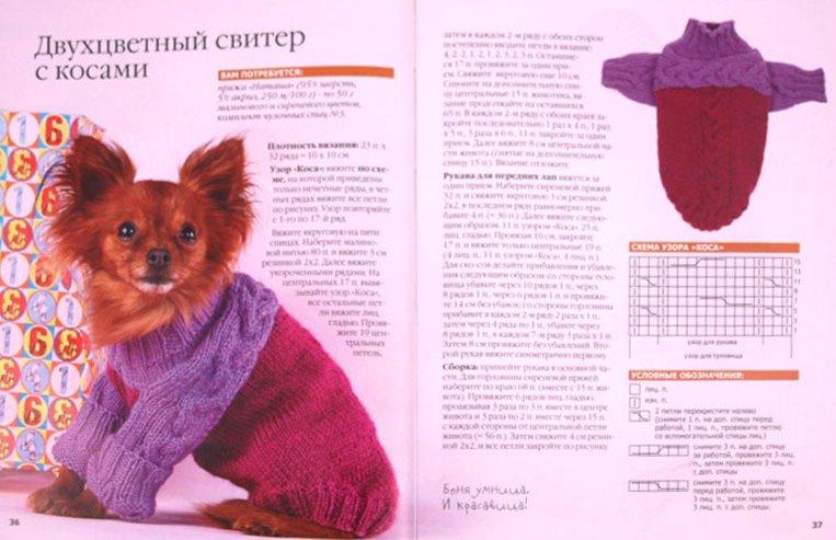 Иллюстрация 1 из 11 для Одежда для кошек и собак | Лабиринт - книги. Источник: Лабиринт