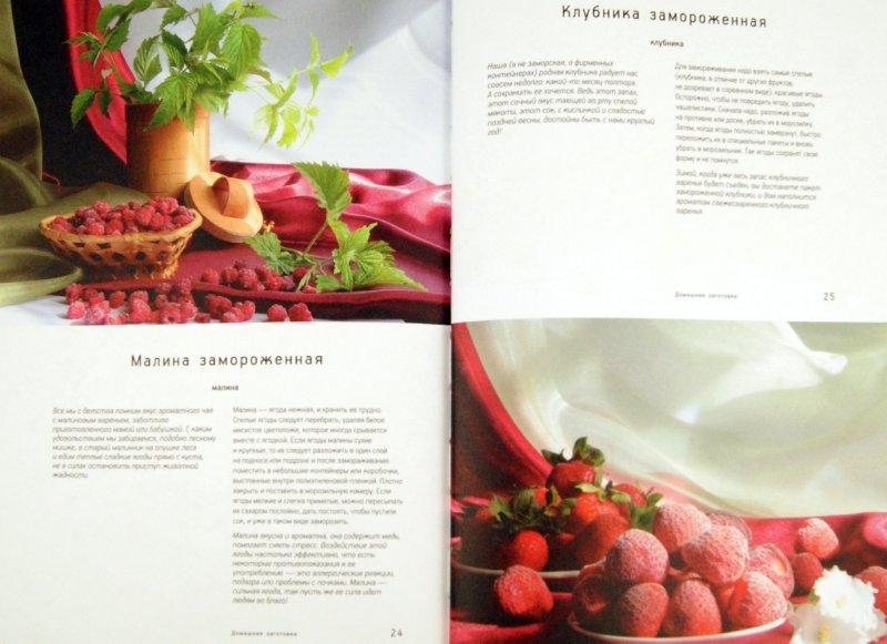 Иллюстрация 1 из 14 для Сушка и заморозка - Наталия Потапова | Лабиринт - книги. Источник: Лабиринт