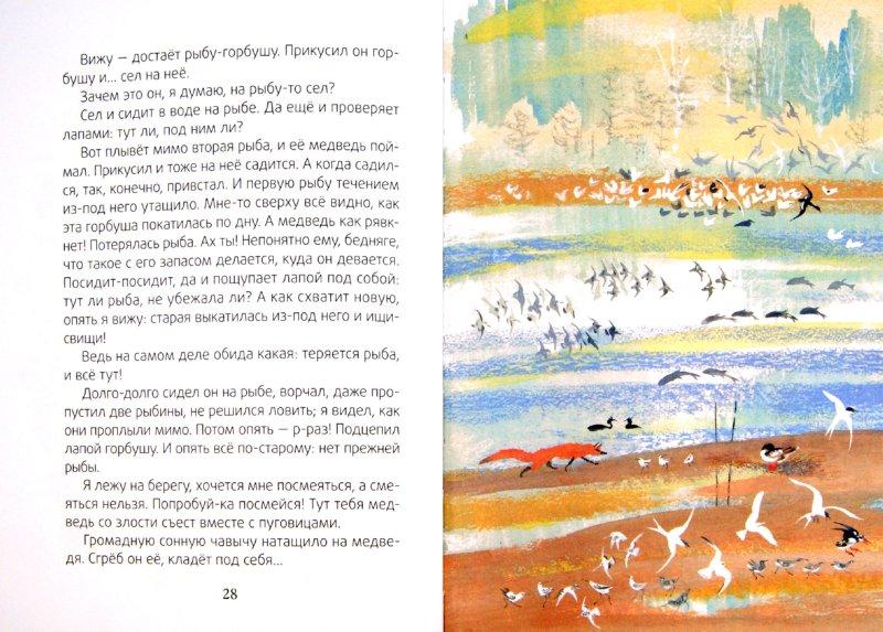 Иллюстрация 1 из 7 для Медведь-рыбак - Евгений Чарушин | Лабиринт - книги. Источник: Лабиринт