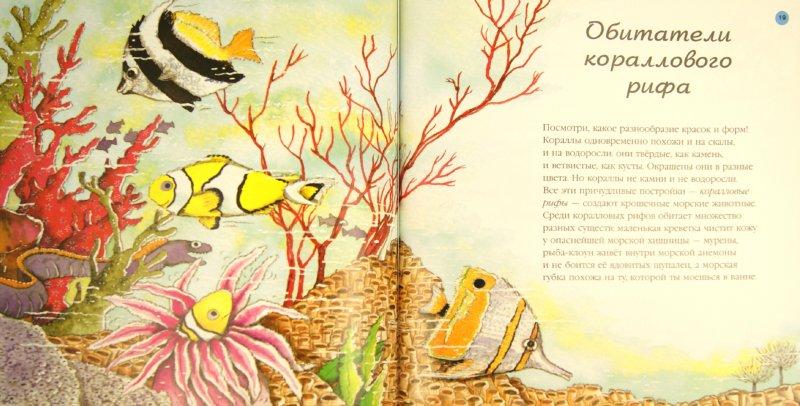Иллюстрация 1 из 33 для Море - Нурия Рока   Лабиринт - книги. Источник: Лабиринт
