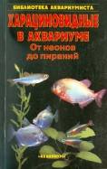 Харациновидные в аквариуме. От неонов до пираний