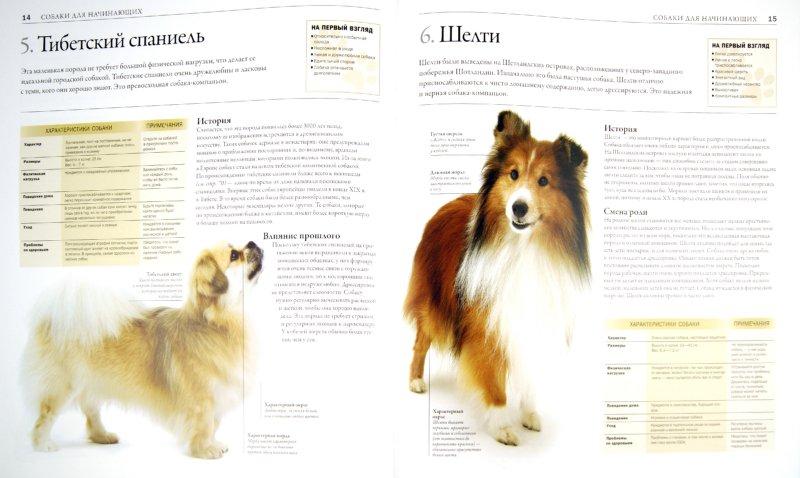 Иллюстрация 1 из 7 для Все породы собак - Дэвид Элдертон | Лабиринт - книги. Источник: Лабиринт
