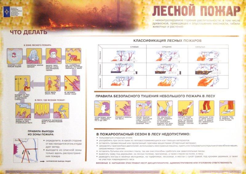 Иллюстрация 1 из 3 для Правила поведения в чрезвычайных ситуациях природного характера (5 плакатов)   Лабиринт - книги. Источник: Лабиринт