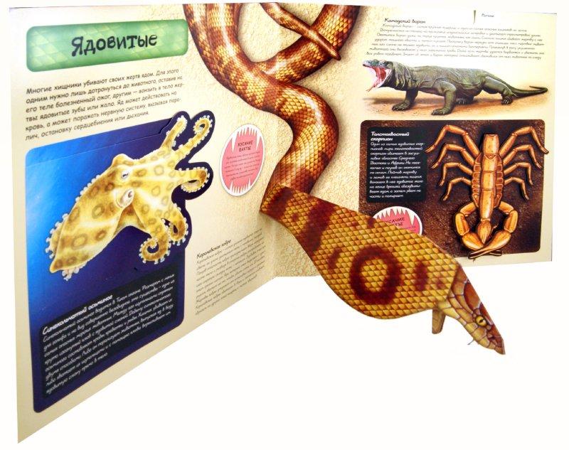Иллюстрация 1 из 3 для Животные-охотники | Лабиринт - книги. Источник: Лабиринт