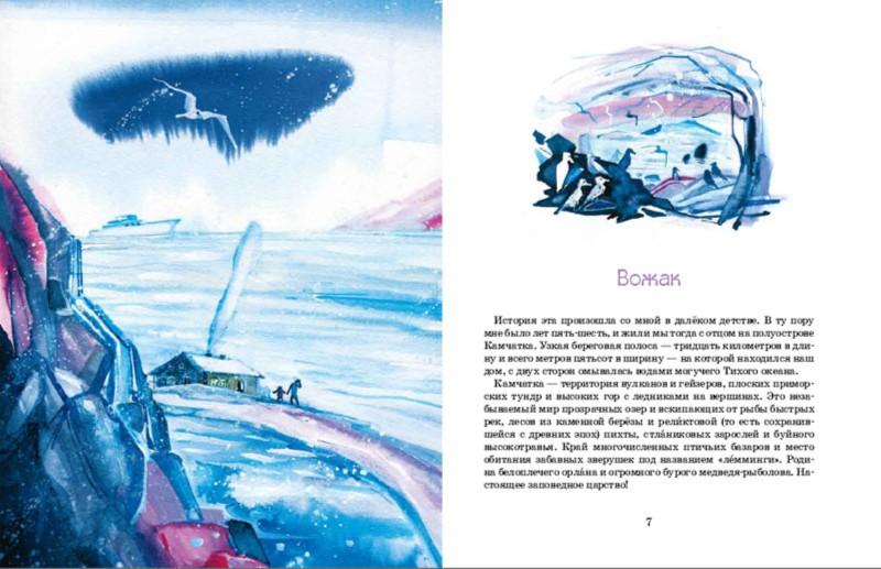 Иллюстрация 1 из 17 для Вожак - Андрей Матвеенко | Лабиринт - книги. Источник: Лабиринт