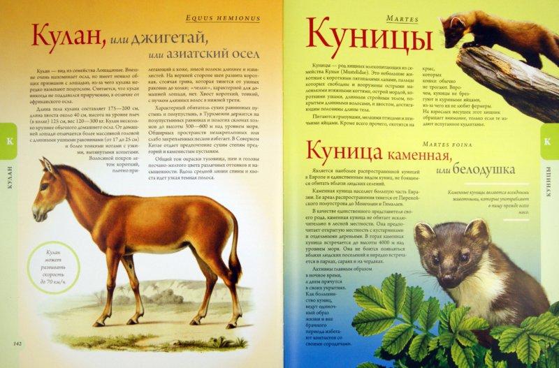Иллюстрация 1 из 11 для Жизнь животных - Альфред Брем | Лабиринт - книги. Источник: Лабиринт
