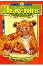 Львенок африканский
