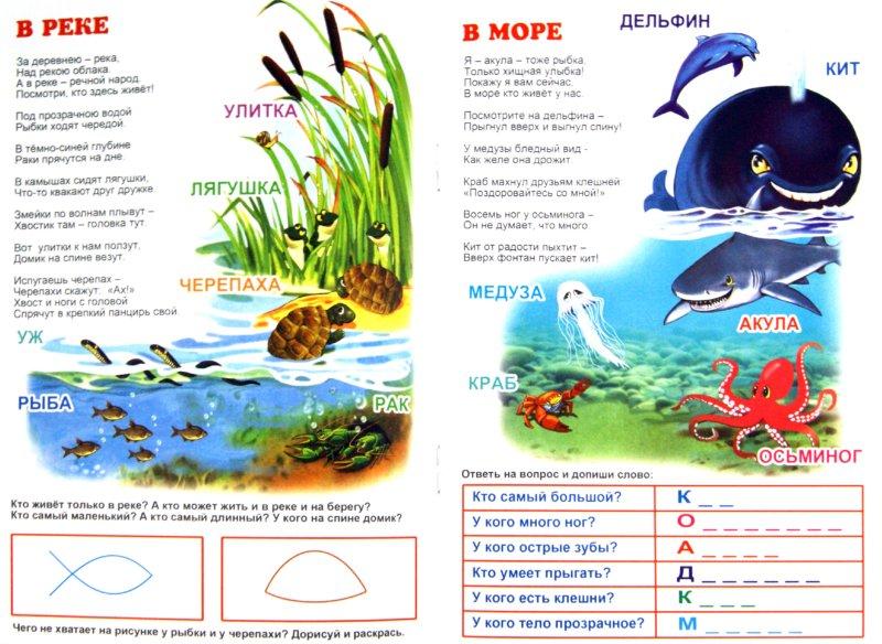 Иллюстрация 1 из 17 для Посмотри вокруг. КТО ЖИВЕТ ЗА ОКНОМ - О. Кучеренко | Лабиринт - книги. Источник: Лабиринт