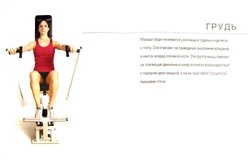 Иллюстрация 1 из 9 для Анатомия упражнений: Тренер и помощник в ваших занятиях - Пэт Маноккиа | Лабиринт - книги. Источник: Лабиринт