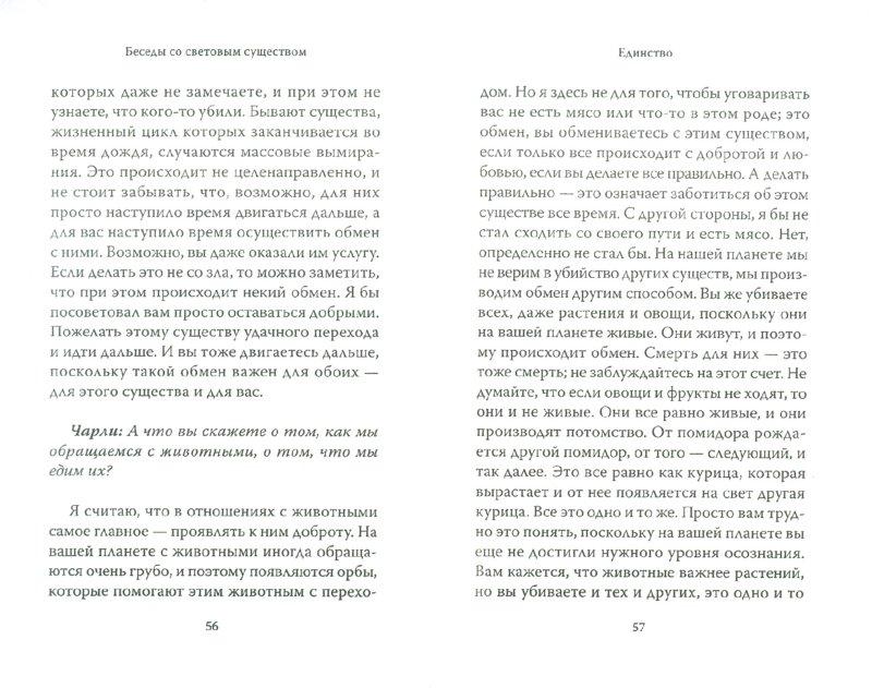 Иллюстрация 1 из 11 для Беседы со световым существом: Как быть спокойным на беспокойной планете - Крачун, Макфадден   Лабиринт - книги. Источник: Лабиринт