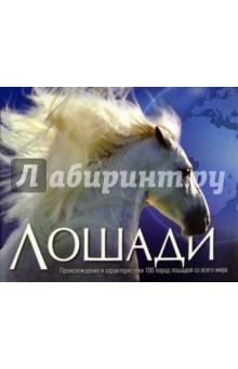 Лошади от Лабиринт