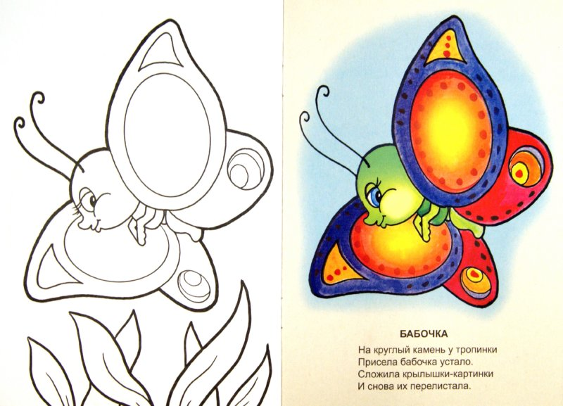 Иллюстрация 1 из 20 для Знаешь ли ты насекомых? - Наталья Томилина | Лабиринт - книги. Источник: Лабиринт