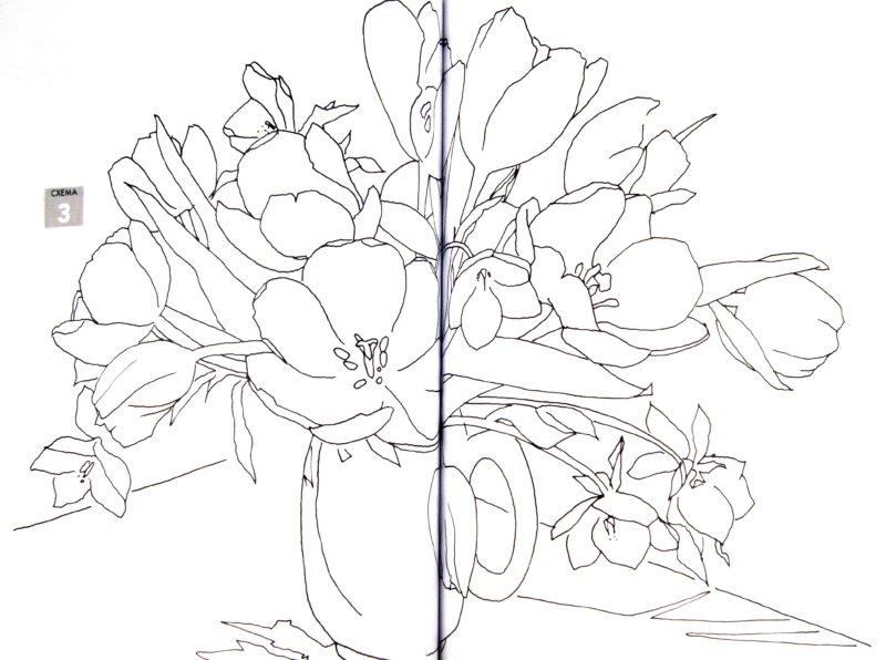 Иллюстрация 1 из 6 для Рисуем по схемам. Тюльпаны. Акварель №20 - Фиона Перт | Лабиринт - книги. Источник: Лабиринт