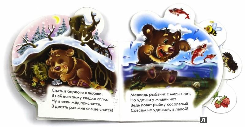 Иллюстрация 1 из 15 для Все про медвежонка - Ирина Солнышко | Лабиринт - книги. Источник: Лабиринт