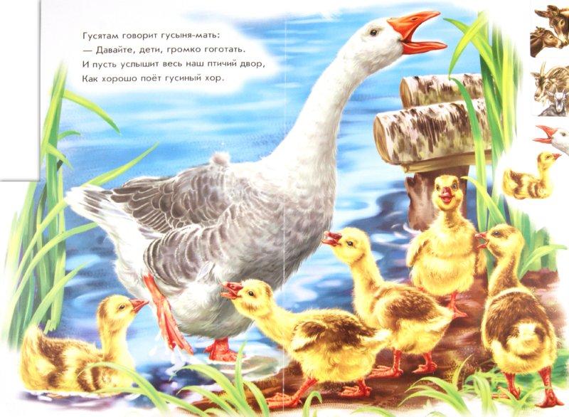 Иллюстрация 1 из 6 для На ферме - Ринат Курмашев | Лабиринт - книги. Источник: Лабиринт