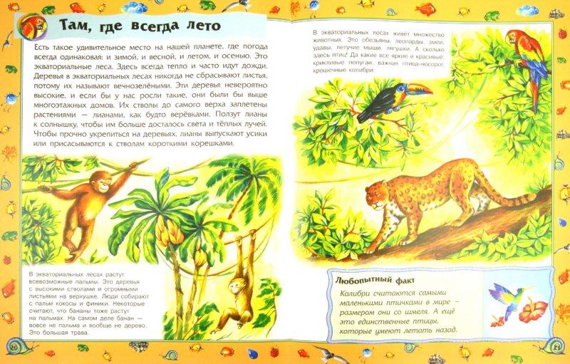 Иллюстрация 1 из 15 для Наша планета - Ю. Каспарова | Лабиринт - книги. Источник: Лабиринт