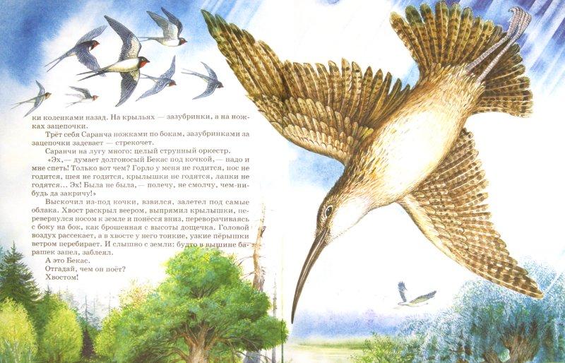 Иллюстрация 1 из 31 для Самые лучшие рассказы и сказки о животных - Бианки, Сладков, Пришвин, Шим   Лабиринт - книги. Источник: Лабиринт