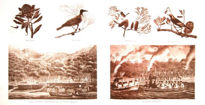 Иллюстрация 1 из 51 для Великие русские первооткрыватели и их путешествия   Лабиринт - книги. Источник: Лабиринт