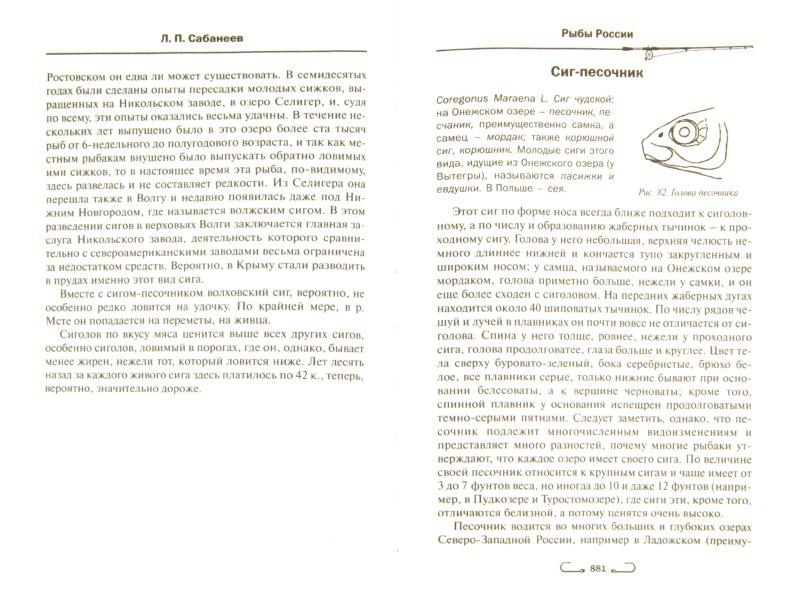 Иллюстрация 1 из 24 для Все о рыбалке - Леонид Сабанеев | Лабиринт - книги. Источник: Лабиринт