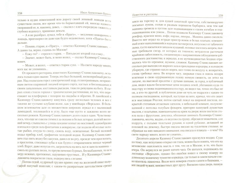 Иллюстрация 1 из 15 для Жизнь Арсеньева. Окаянные дни. Повести и рассказы - Иван Бунин | Лабиринт - книги. Источник: Лабиринт