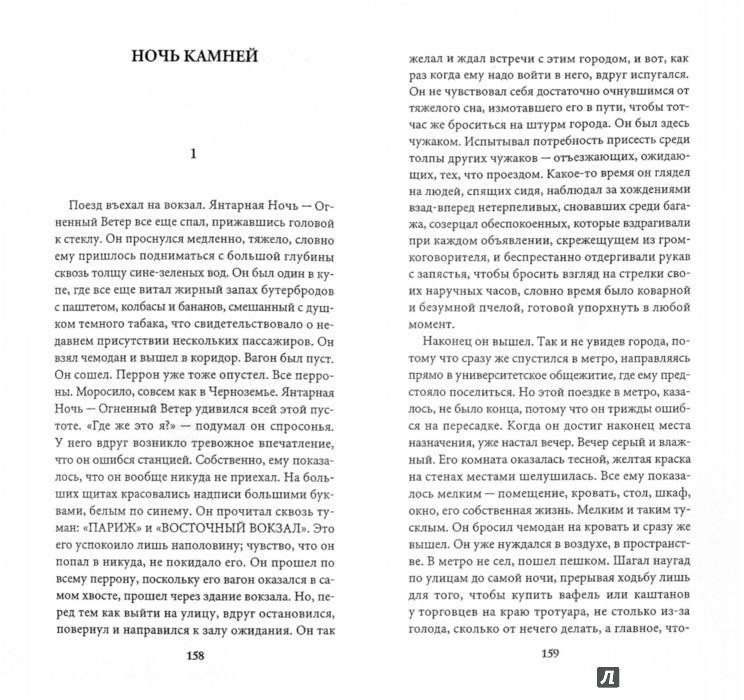 Иллюстрация 1 из 15 для Янтарная ночь - Сильви Жермен | Лабиринт - книги. Источник: Лабиринт