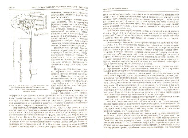 Иллюстрация 1 из 20 для Нормальная анатомия человека. В 2 томах. Том 2 - Иван Гайворонский | Лабиринт - книги. Источник: Лабиринт
