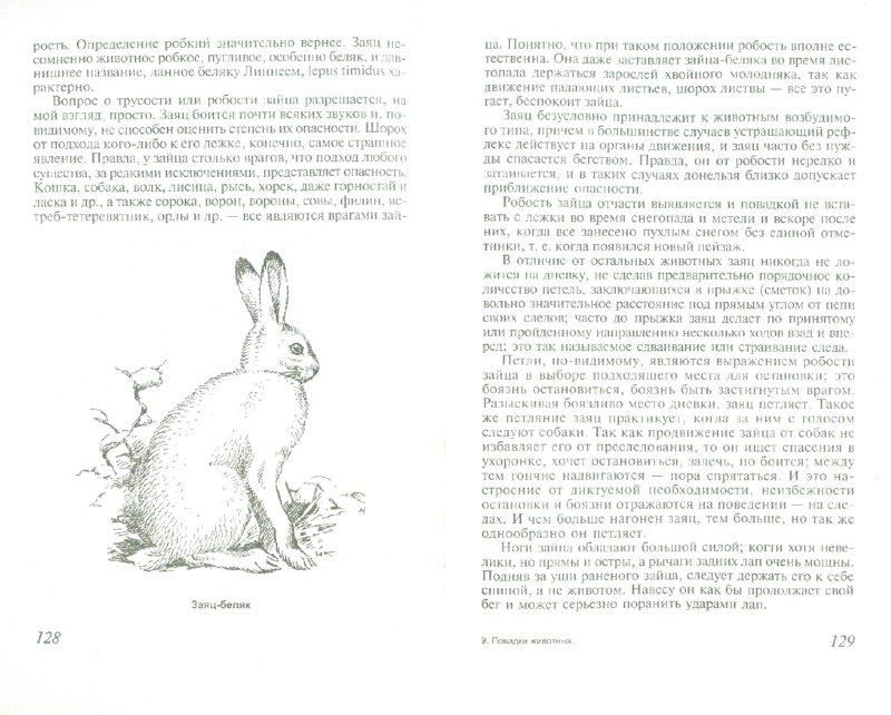 Иллюстрация 1 из 11 для Повадки животных - Николай Зворыкин | Лабиринт - книги. Источник: Лабиринт