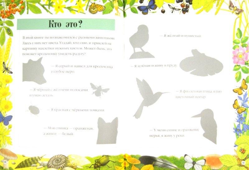 Иллюстрация 1 из 7 для Чудо-наклейки. Счет и цвет - Морис Пледжер | Лабиринт - книги. Источник: Лабиринт