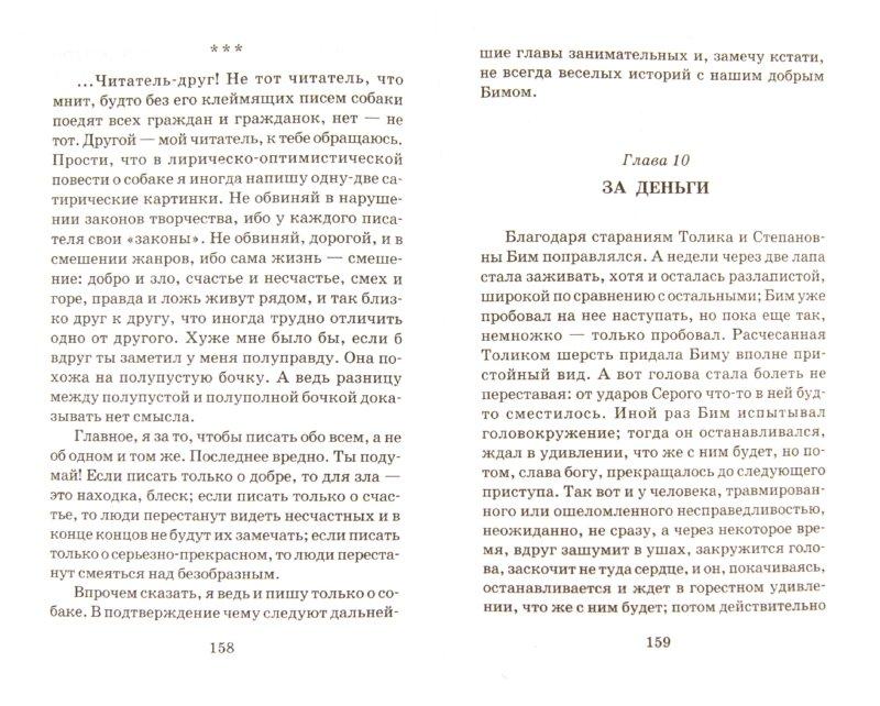 Иллюстрация 1 из 5 для Белый Бим Черное ухо - Гавриил Троепольский | Лабиринт - книги. Источник: Лабиринт
