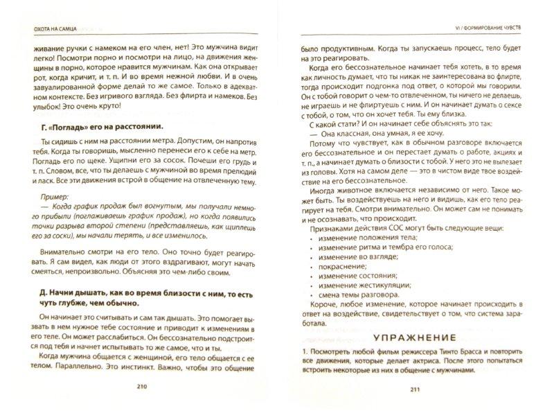 Иллюстрация 1 из 10 для Охота на самца. Выследить, заманить, приручить. Практическое руководство - Алекс Лесли | Лабиринт - книги. Источник: Лабиринт
