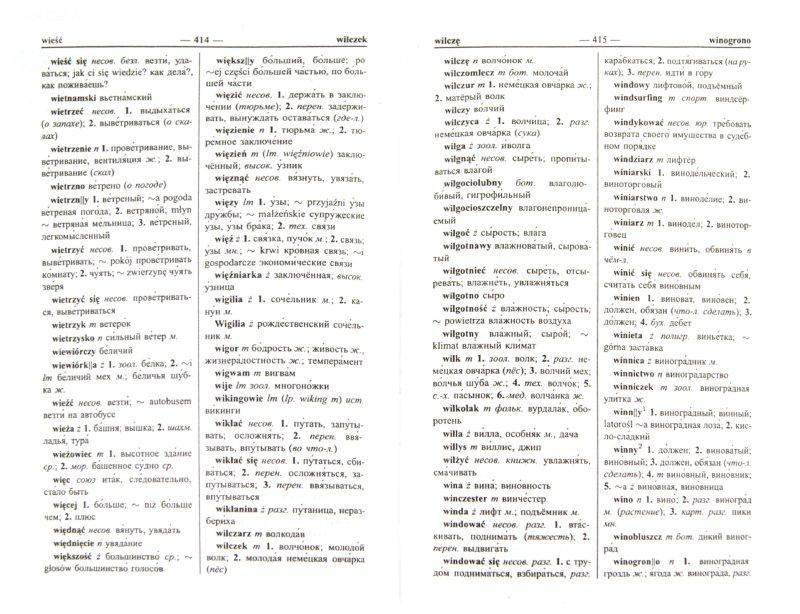 Иллюстрация 1 из 8 для Новый польско-русский и русско-польский словарь   Лабиринт - книги. Источник: Лабиринт