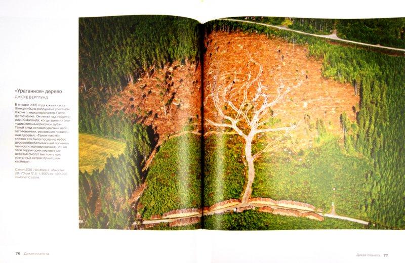 Иллюстрация 1 из 16 для Дикая планета | Лабиринт - книги. Источник: Лабиринт