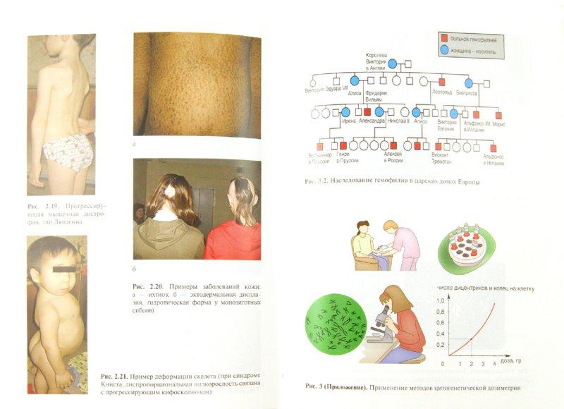 Иллюстрация 1 из 10 для Генетика человека с основами медицинской генетики. Учебник для медицинских училищ и колледжей - Хандогина, Терехова, Жилина | Лабиринт - книги. Источник: Лабиринт