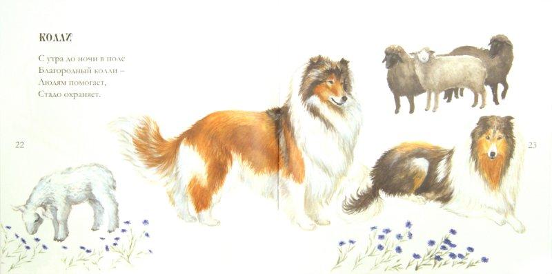 Иллюстрация 1 из 22 для Собачьи мечты - Игорь Карде | Лабиринт - книги. Источник: Лабиринт