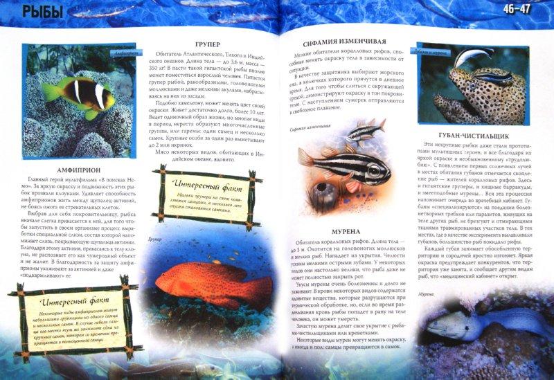 Иллюстрация 1 из 11 для Атлас морей и океанов | Лабиринт - книги. Источник: Лабиринт