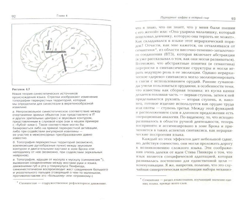 Иллюстрация 1 из 12 для Рождение разума - Вилейанур Рамачандран | Лабиринт - книги. Источник: Лабиринт