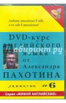 Zakazat.ru: DVD-курс английского языка №6 (DVD). Пахотин Александр