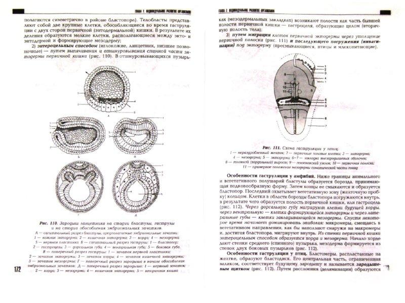 Иллюстрация 1 из 41 для Общая биология - Виталий Сыч | Лабиринт - книги. Источник: Лабиринт