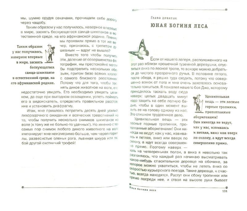 Иллюстрация 1 из 30 для Мы жили среди бауле - Бернгард Гржимек | Лабиринт - книги. Источник: Лабиринт
