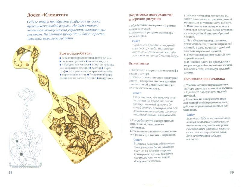 Иллюстрация 1 из 9 для Пирография. Уроки выжигания по дереву - Анна Зайцева | Лабиринт - книги. Источник: Лабиринт