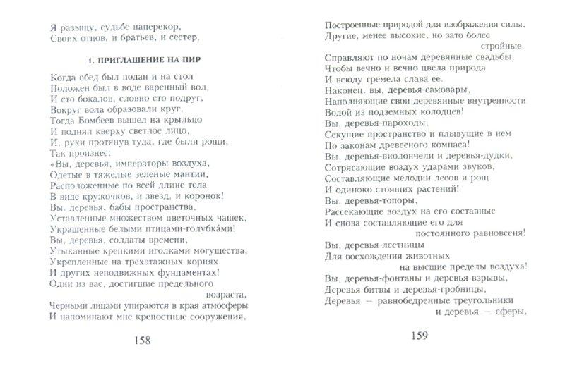 Иллюстрация 1 из 10 для Меркнут знаки Зодиака - Николай Заболоцкий | Лабиринт - книги. Источник: Лабиринт