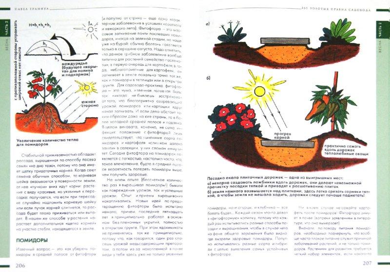 Иллюстрация 1 из 19 для 365 золотых правил садовода на каждый день года - Павел Траннуа | Лабиринт - книги. Источник: Лабиринт