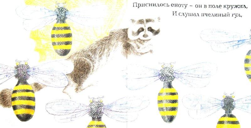 Иллюстрация 1 из 31 для Енот и бабочка - Александр Коняшов | Лабиринт - книги. Источник: Лабиринт
