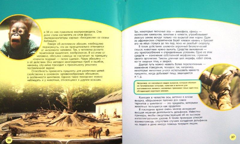 Иллюстрация 1 из 8 для Способности и возможности - Дроздов, Макеев | Лабиринт - книги. Источник: Лабиринт