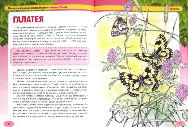 Иллюстрация 1 из 17 для Бабочки и их друзья - Сергей Шустов   Лабиринт - книги. Источник: Лабиринт