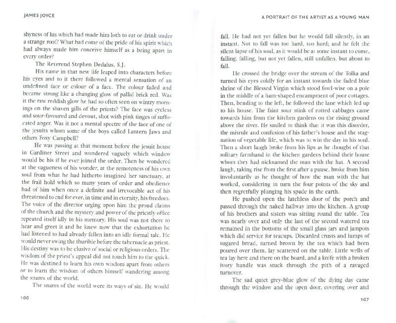 Иллюстрация 1 из 11 для A Portrait Of The Artist As A Young Man - James Joyce | Лабиринт - книги. Источник: Лабиринт