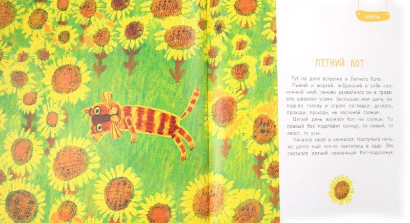 Иллюстрация 1 из 31 для Круглый год (+DVD) - Юрий Коваль | Лабиринт - книги. Источник: Лабиринт