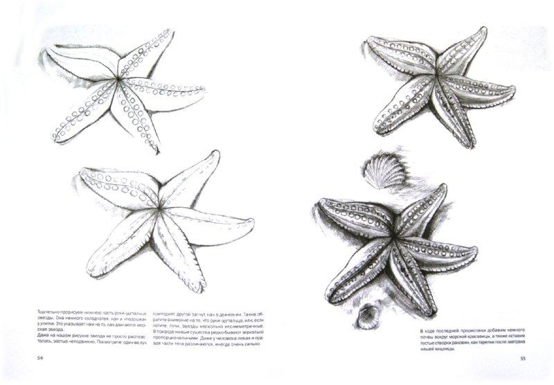 Иллюстрация 1 из 31 для Простые уроки рисования для начинающих - Виктория Мазовецкая | Лабиринт - книги. Источник: Лабиринт