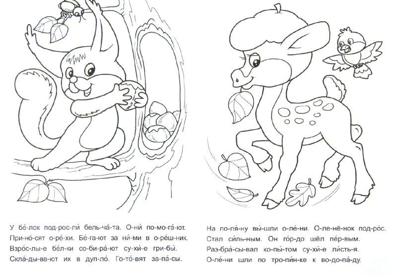 Иллюстрация 1 из 13 для Что мы видели осенью? - Виталий Лиходед | Лабиринт - книги. Источник: Лабиринт