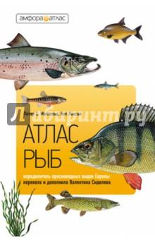 Атлас рыб. Определитель пресноводных видов Европы интернет зоомагазин рыб доставка по россии